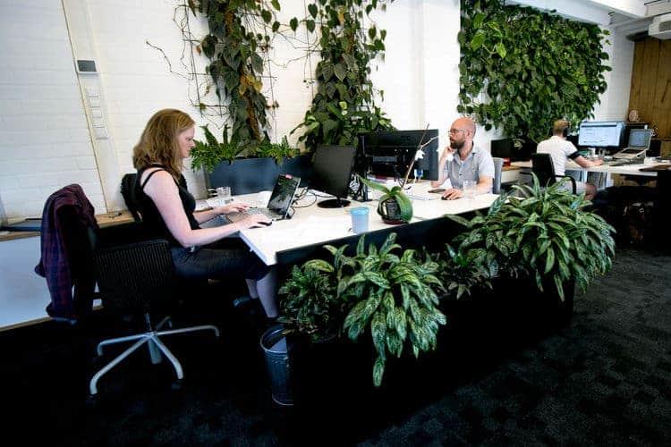 Gedeelde werkplekken in groene kantoortuin